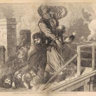 A Family Terribly Perish on the Roof of a House, in View of the Multitude Below; from E. J. Goodspeed, The Great Fires in Chicago and the West, 1871 (ichi-35085)